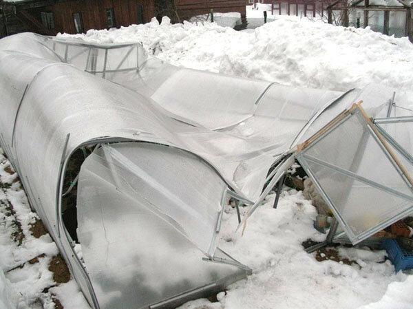 сколько снега надо накидать в теплицу